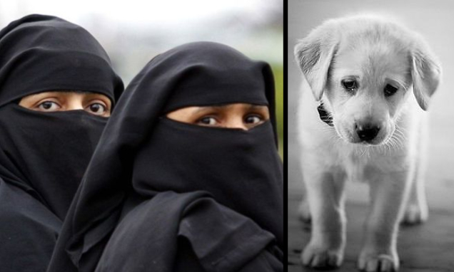 DISBELIEF as DOG accused of committing RACIST hate crime!